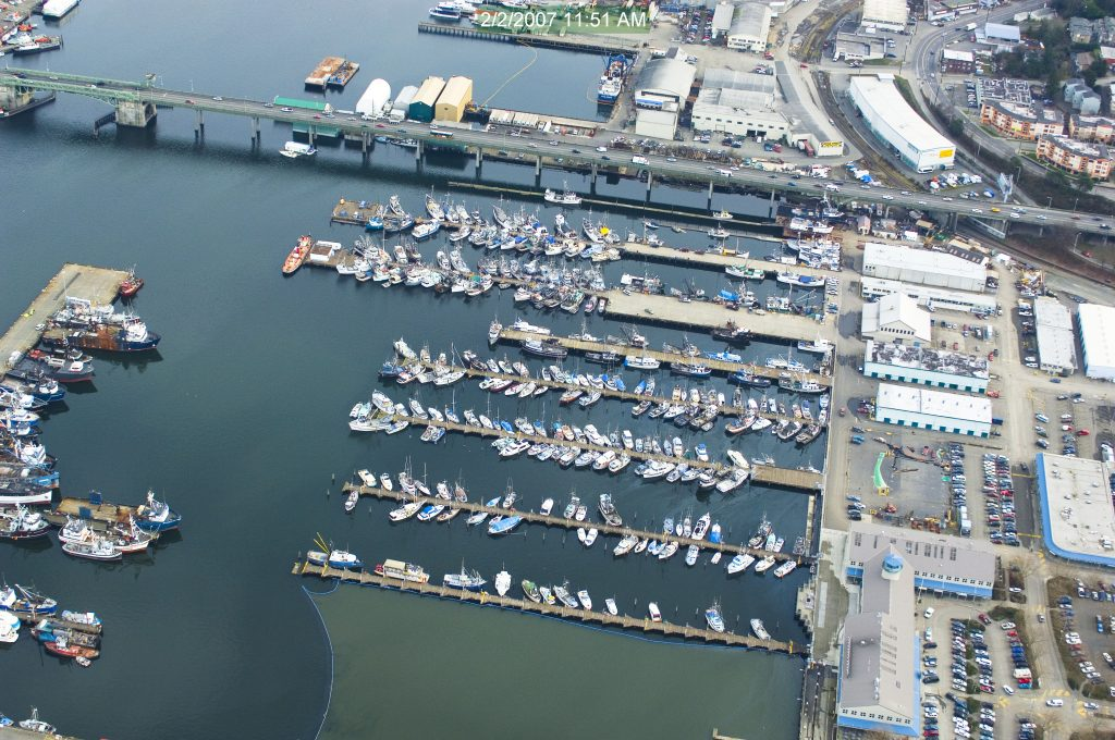 Fish Protection - Ballard Bridge Seismic Retrofit - Soundview