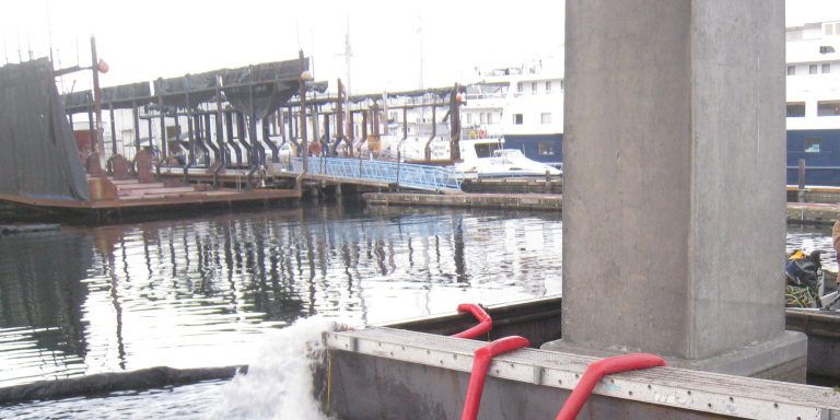Image of bridge column and cofferdam after fish removal. Water is flowing from large hoses over the cofferdam back into the lake.